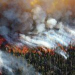 Požár na Sibiři dosáhl biblických rozměrů a dotkne se každého z nás!